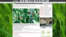 Minute PAC - calculette aide verte - Comment y accéder ?