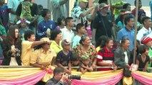 Thaïlande: les courses de buffles en guise de courses hippiques