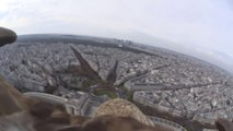 Flying eagle point of view - A flight over Paris