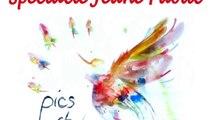 Spectacle musical : Pics et Plumes (pour enfants de 6 mois à 6 ans)