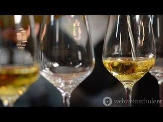 Weinschule Folge 4: Die Sache mit dem Wein