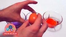 Yumurtanın sarısını ayırmanın en ilginç yolu! (How to separate egg yolks) ENG SBT