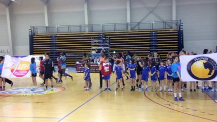Coupe de la Ligue de handball