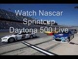 Daytona 500 vidoes