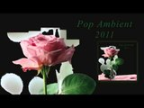 Barnt - Libretto 'Pop Ambient 2011' Album