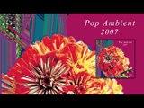 Markus Guentner - Altocomulus Opacus 'Pop Ambient 2007' Album