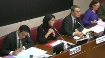 Audition de Fleur Pellerin devant la commission des affaires culturelles et de l'éducation de l'Assemblée nationale (14/10/2014)