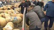 Les musulmans de Belgique ont célébré l'Aïd al Kebir