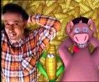 Les Fascagat - Le cochon dans le maïs
