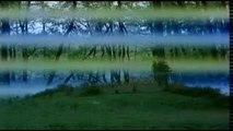 La France (2007,Drama,Foreign, Musical,Trailer)