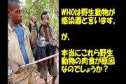 【アメリカの特許!】 エボラ・ボラ・ボラ・ボラ 【世界で捏造パンデミック!】