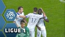 OGC Nice - SC Bastia (0-1)  - Résumé - (OGCN-SCB) / 2014-15