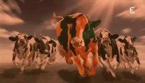 Adieu, Veau, Vache, Cochon, Couvée (2/2)
