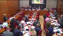 Mon intervention ce matin en commission des affaires culturelles relative au Budget 2015 : Audiovisuel ; Presse ; Livre et industries culturelles!