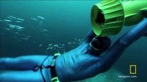 Un plongeur en apnée nage entre les Icebergs!