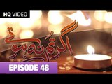 Agar Tum Na Hotay Episode 48 on Hum tv 22nd October 2014 Full Episode