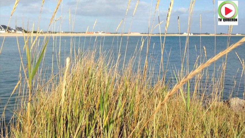 Gavres: Soleil automne et marée haute - Lorient TV