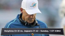Habib: Trap Game for Dolphins?