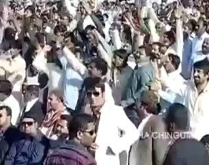 Gull khan aur billo ki payer khani