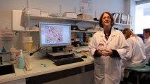 Microscopie numérique et cas clinique virtuel - Jean-Louis Megnien & Virginie Siguret