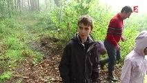 La cueillette aux champignons a débuté dans la forêt de Montmorency