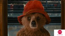 New International Trailer Released For PADDINGTON – AMC Movie News
