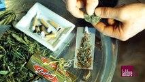 Effets et conséquences du cannabis