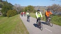 Vélo découverte le long du Rhône