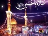 Shadman Raza Nohay 2015 - Shah Ne Ali Asghar A.S Ko