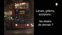 Larves, Grillons, Scorpions : Les Steaks De Demain ?