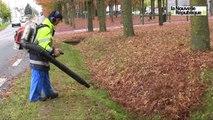 VIDEO. Blois : Les feuilles mortes se ramassent au souffleur