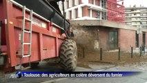 Réforme des nitrates: les agriculteurs déversent du fumier