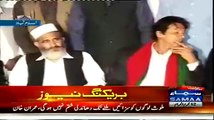 Imran Khan's Excellent Response to Reporter on Pervez Rasheed's Comments