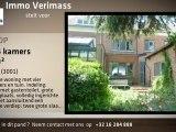 Te koop - Huis / Woning - Heverlee (3001) - 4 kamers - 195m²