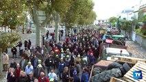 Manifestation des agriculteurs à Carcassonne : les raisons de la colère
