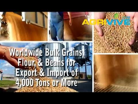 Buy Bulk Soybeans, Bulk Soybeans, Bulk Soybeans, Bulk Soybeans, Bulk Soybeans, Bulk Soybeans, Bulk Soybeans, Bulk