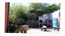 Maison F5 à vendre, Fontenay Aux Roses  92, 790000€
