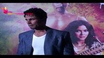 'Rangrasiya' Special Screening | Randeep Hooda,Nandana Sen,Manisha Koirala