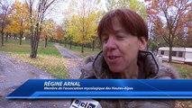 Alpes du Sud: Retour sur l'actualité du week-end du 8 au 10 novembre