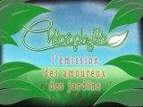 Chlorophylle épisode 110 sur Télé Doller