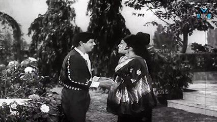 Kettikkaran Movie - Nagesh Back To Back Comedy Scenes