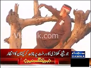 Nankana - PTI Baba ji clambered up the tree to see Imran Khan