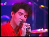 Lloyd Cole & the Commotions - Forest Fire (live 1985)