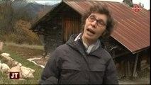 Patrimoine : La conservation des chalets d'alpage (Savoie)