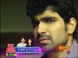 Agni Poolu 14-11-2014 | Gemini tv Agni Poolu 14-11-2014 | Geminitv Telugu Episode Agni Poolu 14-November-2014 Serial