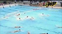 Waterpolo Vaterpolo Vizilabda Pallanuoto: Havk Mladost vs Partizan