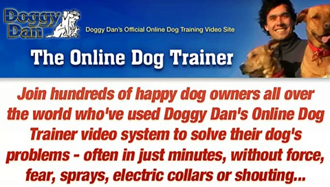 Dog Training By – The Online Dog Trainer