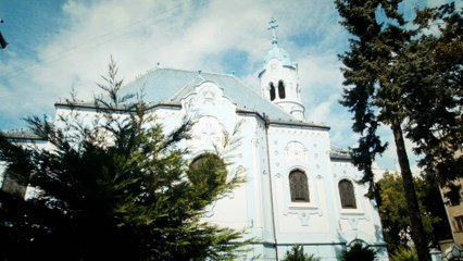 Bratislava culture