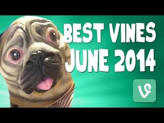 Brittany Furlan VINE Compilation   Best VINES of June 2014!