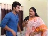 Sravana Sameeralu 18-11-2014 ( Nov-18) Gemini TV Episode, Telugu Sravana Sameeralu 18-November-2014 Geminitv  Serial